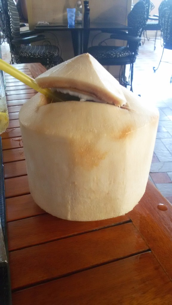 Fresh Coconut Rum Cocktail