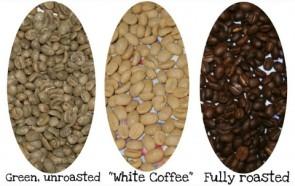 whitecoffeeroast