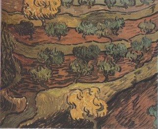 878px-Van_Gogh_-_Olivenbäume_auf_einem_Hügel
