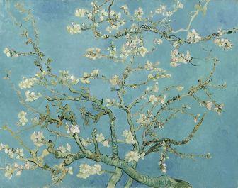 911px-Vincent_van_Gogh_-_Almond_blossom_-_Google_Art_Project